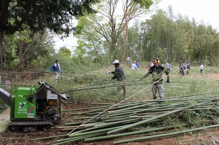 粉砕機を使って竹を粉砕します