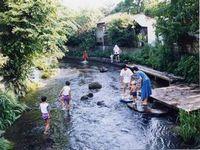 【画像】水辺環境再生・源兵衛川:詳細へのリンク