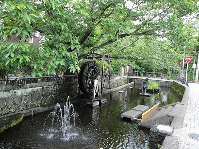 【画像】蓮沼川(宮さんの川)