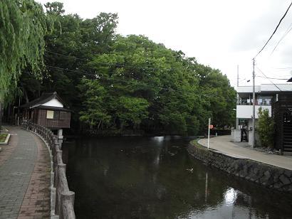 【画像】桜川