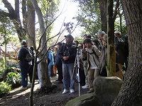 【画像】楽寿園の自然観察