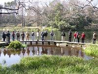 【画像】柿田川(清水小学校教材園)の水辺散策