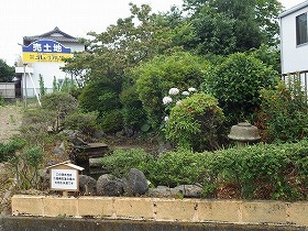 三島梅花藻の里西隣(PL三島教会跡地)の湧水地