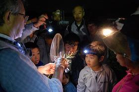 松毛川・夜に鳴く虫の観察会