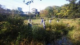 境川・清住緑地ワンデイチャレンジ