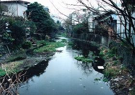 整備前の源兵衛川(1980年代)