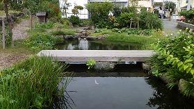 緑と水の杜
