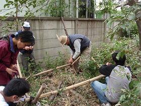 シイタケ栽培の支柱建て直し作業