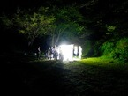 8/9 鎮守の森探検隊 「光を灯して、夜の虫の観察会」