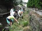 9/14源兵衛川中流部環境再生ワンデイチャレンジを開催