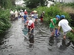 第5回「プロジェクト未来遺産」(日本ユネスコ協会連盟)に源兵衛川が選定・登録