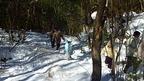 【参加者募集】1/18 子どもフィールドネットワーク活動 第8回 原生林と里山探検