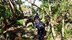 【参加者募集】3/22 子どもフィールドネットワーク活動 第10回 伊豆ジオサイト探検