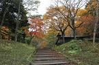富士山の古道調査に行ってきました。