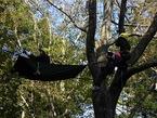 11/30(日)鎮守の森探検隊⑪「五感を使って、森と友達になろう!」を開催します。