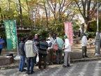 三島梅花藻の里「泉トラスト運動」活動報告 その4