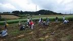 【参加者募集】3/7箱根西麓の馬鈴薯植付けと松毛川野鳥観察会・植樹