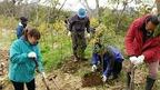 【参加者募集】3/15(日)松毛川「千年の森」づくり植樹