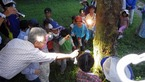 【参加者募集中】平成27年度「鎮守の森探検隊」(6/27〜1/23、全10回)