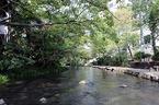 世界「かんがい施設遺産」への源兵衛川の登録審査について