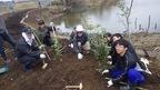 【参加者募集】2/11 松毛川「千年の森」づくり・竹のチップ化と植樹作業