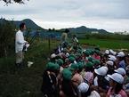 松毛川での観察会