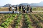 2/27「三島・農業人育成・農楽校」第5回『三島の農業資源』講座を開催