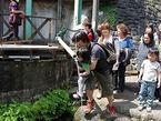 【参加者募集】3/11夕刻・東日本大震災支援活動「子どもを元気に富士山プロジェクト」の被災地支援報告会