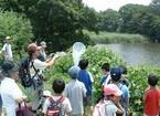 【参加者募集】6/4 ふるさとの川と森づくり 第1回「松毛川」自然観察・三島甘藷植付け体験開催