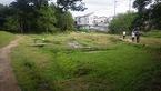 6/8・10境川・清住緑地の草刈りを行いました