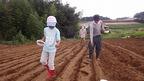 8/27 「三島そば」種まき作業を実施しました