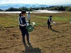 2/7・8 日本大学三島中学校1・2年生4人が職場体験に訪れました