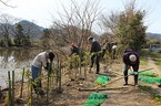 3/18灰塚川(松毛川)ワンデイチャレンジ(植樹等)を実施
