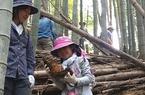 5/7 春の味覚・竹の子掘りを開催しました