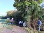 【参加者募集】9/10-11 松毛川(灰塚川)竹林伐採と竹チップづくり