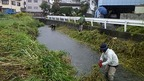 10/13 源兵衛川下流部環境再生ワンデイチャレンジを実施しました!