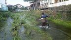 【11月25日に延期】11/11「御殿川環境再生ワンデイチャレンジ」を開催します