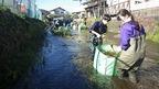 11/25御殿川環境再生ワンデイチャレンジを実施しました