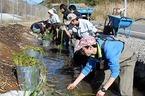 【参加者募集】3/28 大場里山自然水路再生ワンディチャレンジ