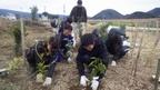 グラウンドワーク三島・「学生サポーター」の募集