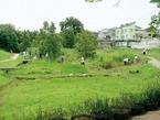 4. 사카이강・키요즈미 녹지