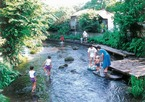 1. 겐베에강 재생