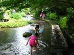 7/1広報みしま・源兵衛川が「世界水遺産」に登録されました