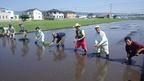 【農業だより】6/25「三島発・新銘柄水稲開発」に向けた田植え式をしました!