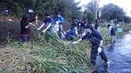 【参加者募集】11/17源兵衛川下流部環境再生ワンデイチャレンジ