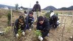 【参加者募集】3/16松毛川「千年の森づくり」活動体験&自然観察会