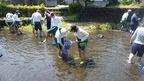 5/17静岡県立清水特別支援学校・源兵衛川体験学習を開催