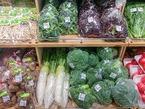 【お知らせ】アグリライフ三島・農産物取扱い店舗のご案内