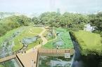8/1境川清住緑地の拡張エリアがオープンします