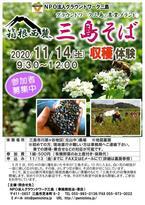 【参加者募集】11/14 三島そば収穫体験
